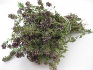 Thym bio antioxydant naturel puissant